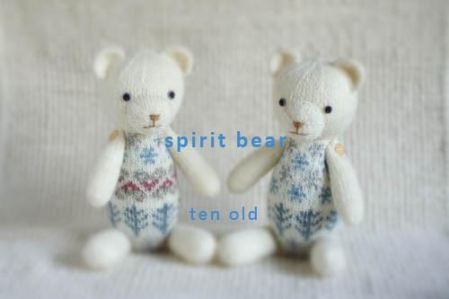 D1576_spirit_bear